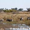 2012-Botswana-0728-2652