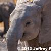 2012-Botswana-0731-4270