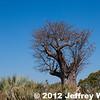 2012-Botswana-0728-2694
