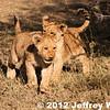 2012-Botswana-0724-0427