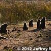 2012-Botswana-0723-0301