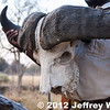 2012-Botswana-0730-3669
