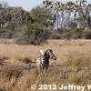 2012-Botswana-0727-2163
