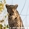 2012-Botswana-0722-0097