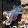 2012-Botswana-0730-3624