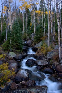 A creek at dusk in Rocky Mountain National Park, September 2012.