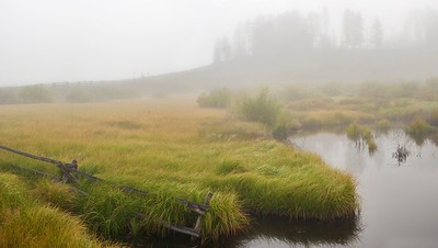 A beaver pond at Devil's Thumb Ranch near Fraser, Colorado.  August 2012.