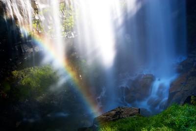 The base of Narada Falls, in Mt. Rainier National Park, Washington.