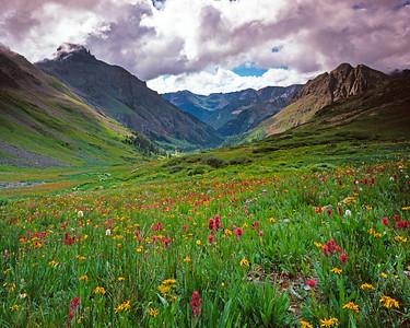 Yankee Boy Basin, Colorado, late July 2010.  Shot on Velvia 100 4x5 film.
