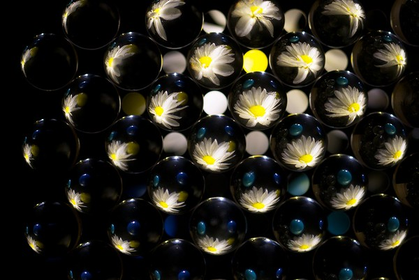 I was bored on a winter weekend day a few years back and got inspired by the drip tray in my espresso machine.  Turns out the spacing of the holes was just right for holding some clear glass marbles.  This shot has a flower underneath the tray, lit from the side by a few flashlights.  It's kind of like looking through a compound eye!