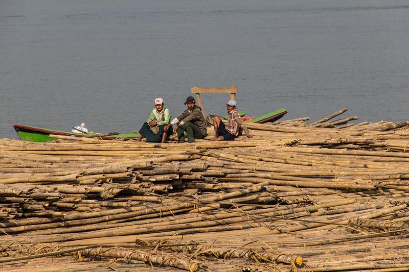 Bamboo on the way to the Yangoon market