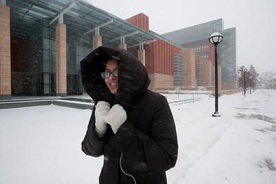 Ann Arbor Snowstorm