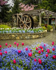 Along the Entry to the Garden