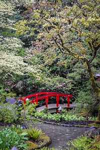 Japanese Garden Red Bridge