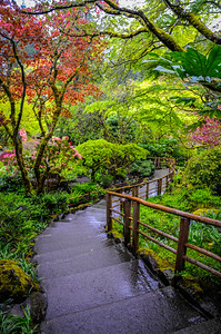Walkway to the Japanese Garden