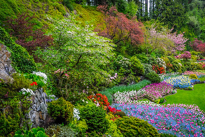 The Sunken Garden 2