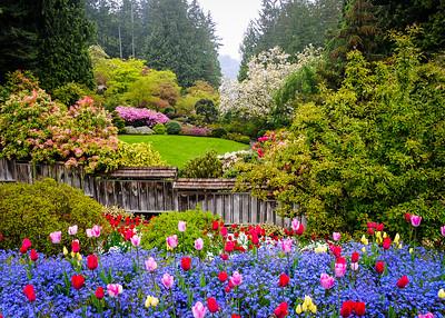 The Sunken Garden 4