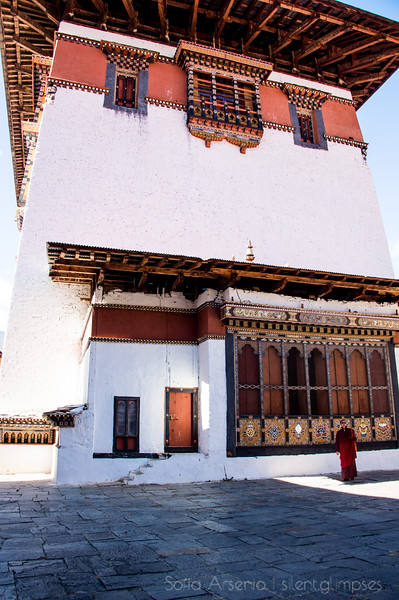 A Monk in the Dzong