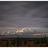 Mt. Denali, viewing from near Wonder Lake Campground