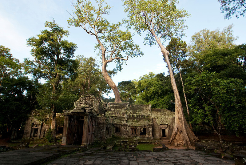 ANGKOR. TA PROHM. OUTSIDE VIEW IN THE EARLY MORNING. SIEM REAP.