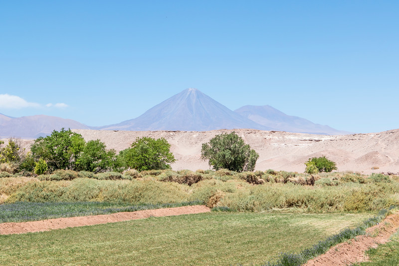 SAN PEDRO DE ATACAMA. VIEW AT THE LICANCABUR VOLCANO.