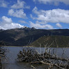 POTATSO NATIONAL PARK. LAKE WITH DEAD TREES. YUNNAN.