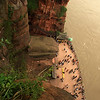LESHAN. GIANT BUDDHA'S FEET. SICHUAN. CHINA.