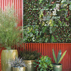 Hanging succulent vertical garden against Persimmon colored metal wall<br /> Variety of green glazed ceramic vessels planted with succulents & other low water needs plants