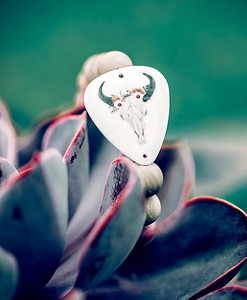 electric picks2016_663 copy