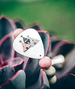 electric picks2016_660 copy
