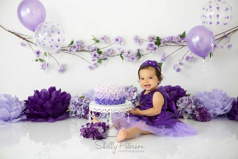 Lavender Garden 2