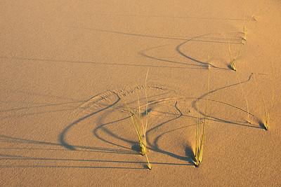 Windblown patterns Kelso Dunes
