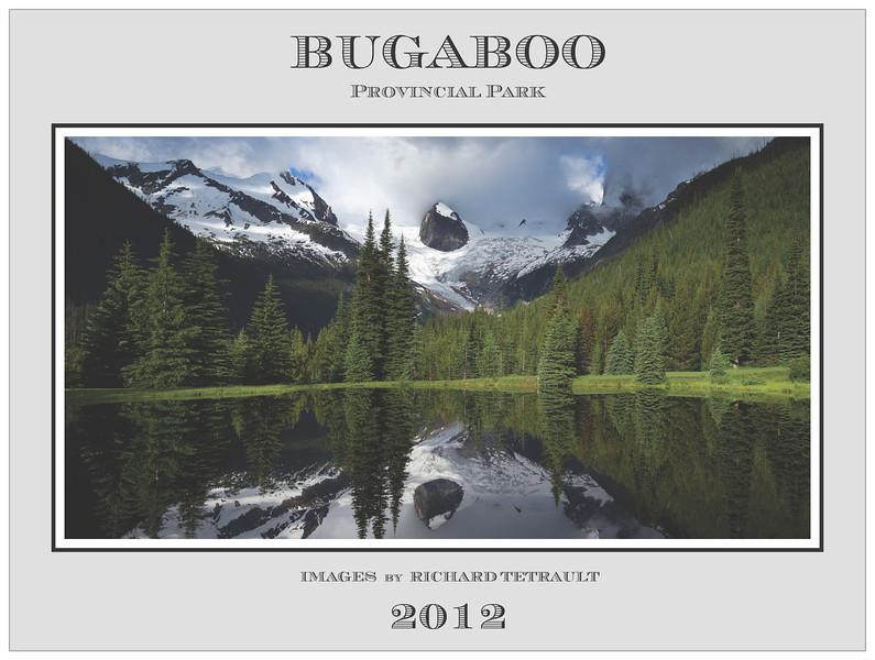 2012-RWT-12x9-bug-dec-14_Page_01