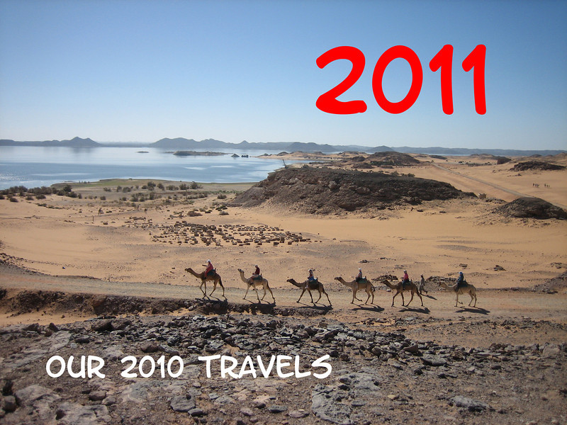 A caravan of camels along Lake Nasser in southern Egypt.  Picture by Ginny Houle.