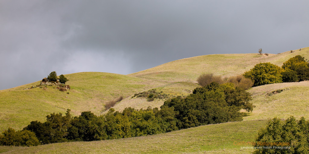 """Rolling Hills""<br /> Location: Mission Peak Regional Preserve, Fremont, California.<br /> <br /> Mission Peak is a popular local hike in the bay area. I was told that up to 4000 people hike this mountain over a typical weekend. Probably it is just the right balance between hike's difficulty level and it's proximity to the city makes it so popular. What I like about it is not just that it is a good exercise but also that it provides me with ample photographic opportunities. This is the view on the west side of the hill during a stormy day. The clouds had occassional breaks providing me with some awesome displays of the light on these beautiful rolling hills.<br /> <br /> Tech Info:<br /> Lens: Canon EF 100mm f/2.8L IS Macro<br /> Camera: Canon EOS 5D Mk II<br /> Exposure: 1/400sec at f/8 and ISO 100 handheld<br /> No filters and bit of LR processing including Grad ND filters"