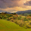 """""""Undulating hills and Oaks of California Landscape"""" <br>Location: Joseph D Grant County Park, California. <br>GPS: <a href=""""http://g.co/maps/hd2bj"""">37°20'4"""" N 121°41'56"""" W</a>  <p><p>Just after the rains, when the colors were deep, air was fresh and clouds were dramatic I realized it would be difficult to catch this moment again. So I stopped and made this image by the <a href=""""http://g.co/maps/hd2bj"""">roadside</a>.  <p>Tech Info: <br>Lens: Canon EF 24-70 f/2.8L @50mm <br>Camera: Canon EOS 5D Mk II <br>Exposure: 0.5sec at f/13 and ISO 200 <br>Filters: LEE ND Grads to balance the light of the sky and foreground  <p>Note on processing: <br>I processed this image in Adobe Lightroom 4. These days I find myself using digital graduated filters a lot. I experiment with tonal changes, color contrasts and even color temperature changes to obtain a look of the image that resembles with how I remembered this place. But essentially the processing involved exposure balancing in all areas of the image, saturation changes, and local dodging and burning."""