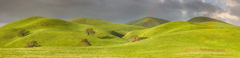 Rolling Hills of Livermore, California