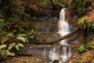 """Middle Golden Cascade Falls"" Location: Big Basin Redwood State Park, California.  Second the series of three cascading falls along the Berry Creek these are Golden Cascade Falls.  Tech Info: Lens: Canon EF 24-70 f/2.8L @57mm Camera: Canon EOS 5D Mk II Exposure: 2sec at f/8 and ISO 100 Filters: No filters Big Basin Redwood State Park is one of the pristine and less known areas if the Bay Area. If you enjoy hiking this is a great place to see tall redwood tress, cascading waterfalls and interesting fall colors when the time is right. The place is best known for its beautiful Berry Creek waterfalls which require at least 4 miles of hiking to reach one way. There are actually three cascading waterfalls along the stream and all of them are very beautiful especially after a rainy season."