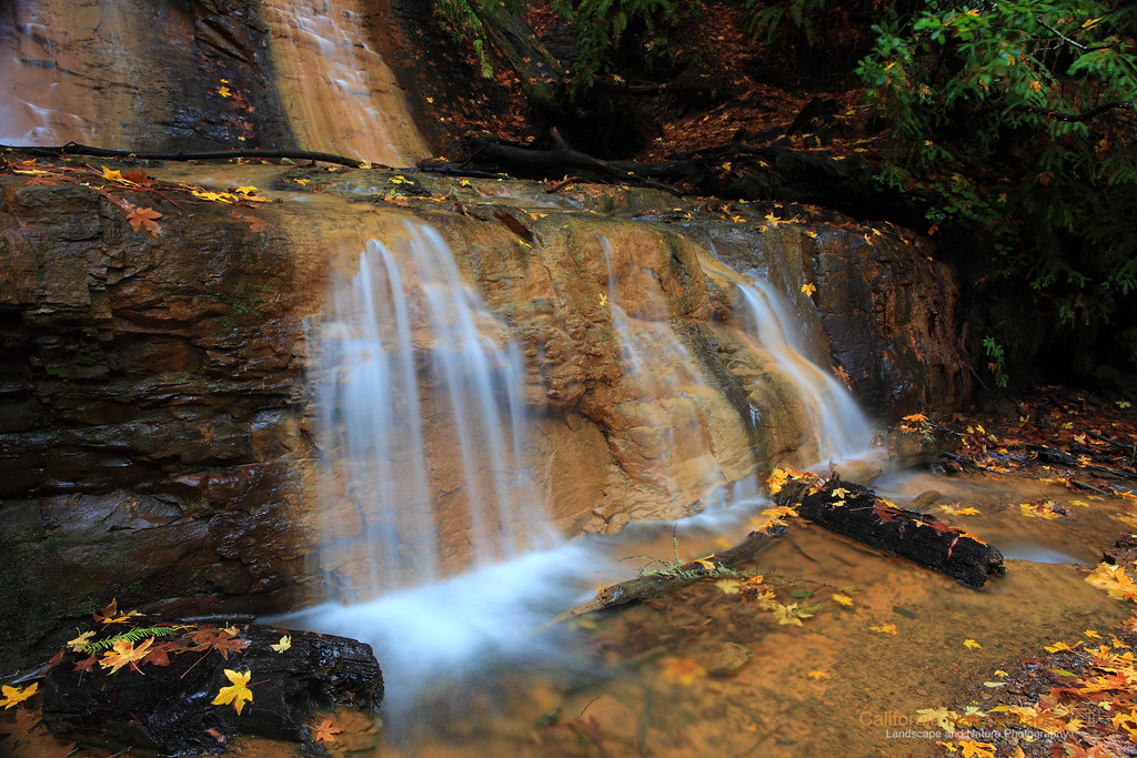 """Upper Golden Cascade Falls"" Location: Big Basin Redwood State Park, California.  These are the upper most section of the cascading falls on the Berry Creek. The fall colors were added bonus for me.  Tech Info: Lens: Canon EF 24-70 f/2.8L @57mm Camera: Canon EOS 5D Mk II Exposure: 2sec at f/13 and ISO 160 Filters: B+W Circular Polarizer <br><br>Big Basin Redwood State Park is one of the pristine and less known areas if the Bay Area. If you enjoy hiking this is a great place to see tall redwood tress, cascading waterfalls and interesting fall colors when the time is right. The place is best known for its beautiful Berry Creek waterfalls which require at least 4 miles of hiking to reach one way. There are actually three cascading waterfalls along the stream and all of them are very beautiful especially after a rainy season."