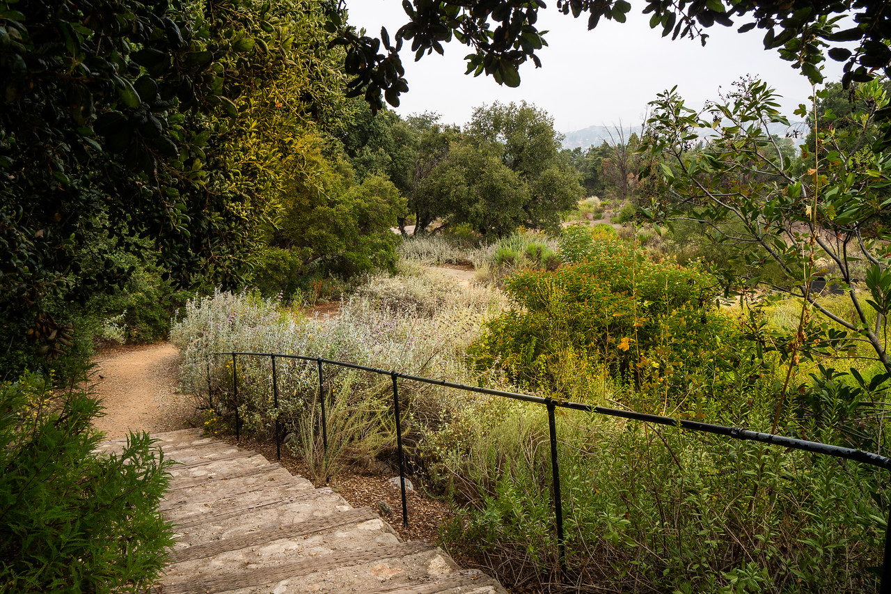 The unmanicured look of this vast California garden