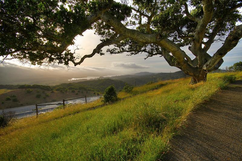 Junipero Serra Freeway - San Mateo County, California