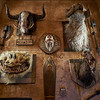 Hunting Trophies - Anaheim, California