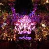 Finale, Enchanted Tiki Room - Anaheim, California