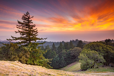 Mt. Tamalpais Sunset