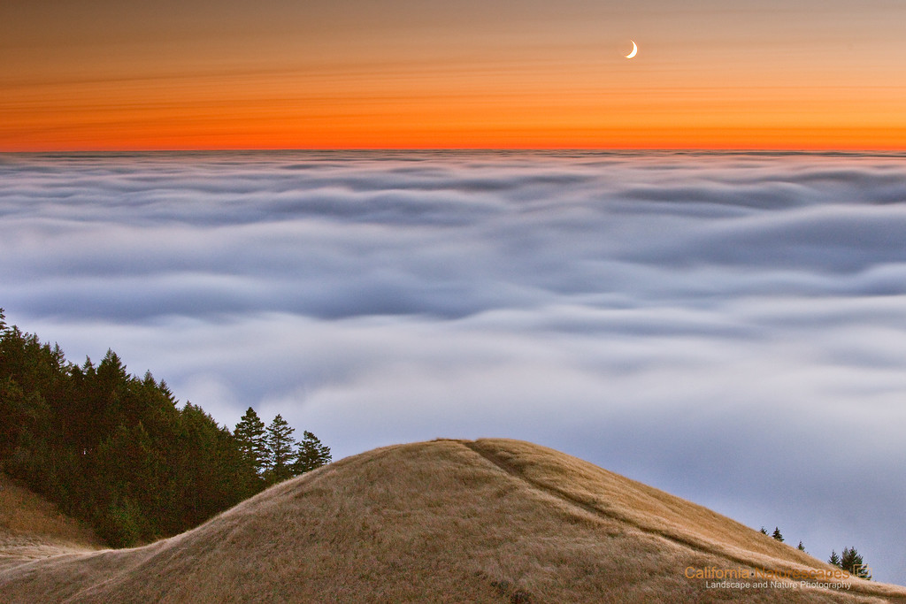 """Heaven's Trail"" Location: Mt Tamalpais, Mill Valley, California.  Among the places that can make you feel being on the edge of the earth, Mt. Tamalpais certainly ranks high in its ability to do so. A visit to this area during summer months is guaranteed to give you a view that is out of this world. The undulating hills rise above the fog which rolls into the San Francisco bay from the Pacific ocean. And what could be a better way to explore such landscape than to hike on the trail carefully managing steep slopes on all sides. I saw fog here several times but I never saw the moonrise. This day was truly special.  Tech Info and Tip: Lens: Canon 70-200mm f/4L @70mm Camera: Canon 5D Mk II Exposure: 25sec at f/9 and ISO 1600 Filters: singhRay 3 stop ND grad hard edge  ISO 1600 is very unusual for me. I usually shoot at ISO 50 or ISO 100, however, in this case the scene was near dark and without high ISO sensitivity it would be impossible to get correct exposure. <br><br>San Francisco is a busy metropolitan area but just a few miles to the north exists a place so quiet and unique that it is such a perfect escape from the chaos of the city life. Mt. Tam, as it is locally know, is a perfect vantage point to watch the summer fog rolling into the bay or just enjoy the hike on its undulating hills and redwood forests."