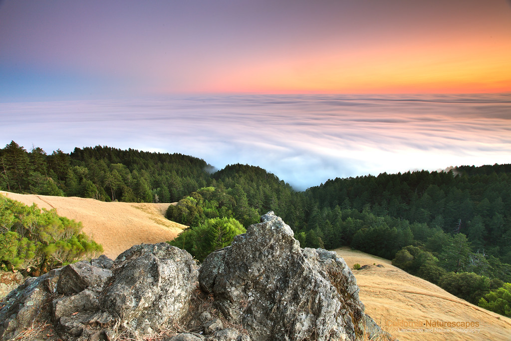"""Summer Sunset"" Location: Mt Tamalpais, Mill Valley, California.  I thought I would talk about this image a bit since it was such a good fun shooting this. It always amazes me to see how these subtle colors in nature start to reveal just after sunset. The so-called magic hour is truly magical.  Technically this is a high dynamic range image but obtained using graduated neutral density filters and not using multiple exposures. It was shot in a single frame using a stack of graduated neutral density filters to avoid overexposure of the sky and the fog.  Once the light is dim and filters are in place to balance the brightness of the sky against land, I like to try long exposures to create these surreal shots. The exposure time for this image is 90sec which helps bring out rich colors that are otherwise not accessible. Hope you enjoyed this image.  Tech Info: Lens: Canon 17-40mm f/4L @ 17mm (Yes, this is a very wide angle shot. I had maybe just about a foot of space between the rocks I photographed and rocks behind me) Camera: Canon EOS 5D Mk II Exposure: 90sec at f/14 and ISO 50 Filters: LEE Graduated ND filters with soft edge 0.9 and 0.6 combined with 3 stop Singh Ray Reverse ND Grad  Post processing for this image was limited to increasing brightness a bit. Of course I adjust white balance on all my shots. Tree area needed some increase in exposure. Colors are all natural and unaltered. Processing was done in Adobe Lightroom <br><br>San Francisco is a busy metropolitan area but just a few miles to the north exists a place so quiet and unique that it is such a perfect escape from the chaos of the city life. Mt. Tam, as it is locally know, is a perfect vantage point to watch the summer fog rolling into the bay or just enjoy the hike on its undulating hills and redwood forests."