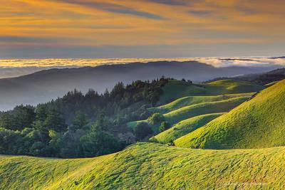 Rollig Hills of Mt Tam