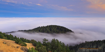 """Fog View"" Location: Mt Tamalpais, Mill Valley, California.  It is such an experience to drive through the the valley below the fog and then break out of it and see the same fog from above. It is nothing short of feeling like being two places at the same time. I highly recommend a visit to Mt. Tamalpais during summer months.  Tech Info: Lens: Canon 17-40mm f/4L @40mm Camera: Canon 5D Mk II Exposure: 10sec at f/13 and ISO 50 Filters: SinghRay 2 stop hard edge ND grad  A long exposure works very well to not just show fog movement but also to make the image possible during low light conditions after sunset. San Francisco is a busy metropolitan area but just a few miles to the north exists a place so quiet and unique that it is such a perfect escape from the chaos of the city life. Mt. Tam, as it is locally know, is a perfect vantage point to watch the summer fog rolling into the bay or just enjoy the hike on its undulating hills and redwood forests."