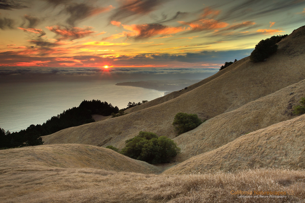 """Rolling Hills of California - II"" <br>Location: Mt Tamalpais State Park, Marin County, California.  <p></p><p>I shot this image just when the sun was peaking through a small gap between the high clouds and the low fog. Hiking on the slopes of undulating rolling hills at Mt. Tamalpais State Park has its perks. Here is an image for those who could not witness the beauty of this amazing place.  </p><p>Tech Info: <br>Lens: Canon EF 17-40mm f/4L @ 30mm <br>Camera: Canon EOS 5D Mk II <br>Exposure: 1.3sec at f/13 and ISO 50 <br>Filters: All the ND Grads I had with me... the dynamic range was too high to be managed with just one filter. <br>Post Processing: Added warm tones by adjusting white balance. Added few more software ND Grads filters. Dust removal and saturation adjustments in Adobe Lightroom  <br><br>San Francisco is a busy metropolitan area but just a few miles to the north exists a place so quiet and unique that it is such a perfect escape from the chaos of the city life. Mt. Tam, as it is locally know, is a perfect vantage point to watch the summer fog rolling into the bay or just enjoy the hike on its undulating hills and redwood forests.</p>"