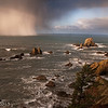 Coastal squall.  Echo State Park, OR.